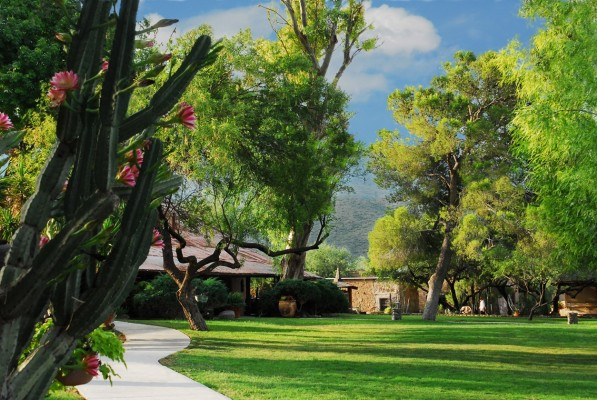 Front Lawn of Tanque Verde Ranch
