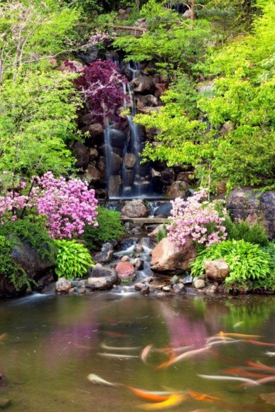 Anderson Japanese Gardens Offers A Tranquil Respite In