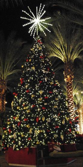 Scottsdale Quarter tree